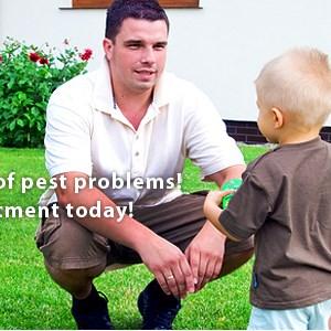 Alleviation Pest Control Logo