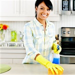 Elsys Cleaning Services Logo