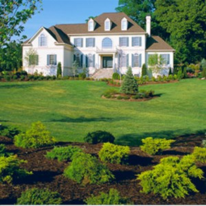 Paradise Property Managers and Landscaping Logo