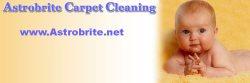 Rug Shine Rug & Carpet Cleaning Logo