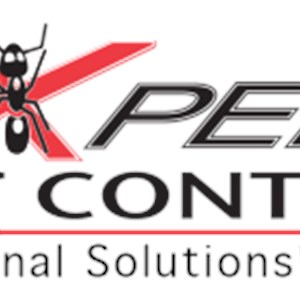 Termite Treatment Chemicals Contractors Logo
