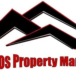 Pros Roofing & Property Management LLC Logo
