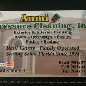 Anmi Pressure Cleaning Cover Photo