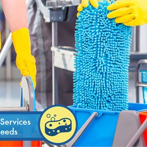 Aptu Cleaning Services Logo