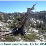 Green Giant Construction Logo