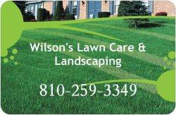 Wilsons Lawncare & Landscaping Logo