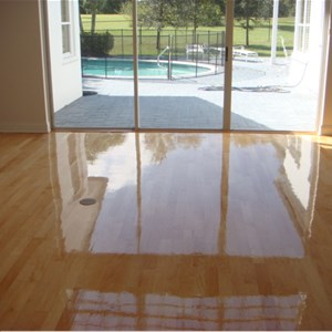 True Quality Wood Flooring Cover Photo