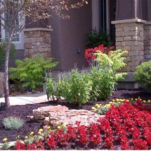 Ideal Lawn & Landscaping Cover Photo