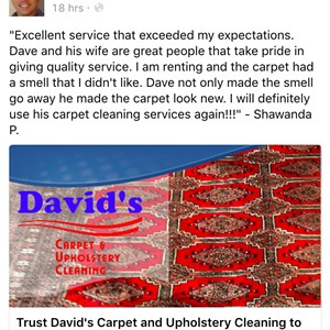 Davids Carpet And Upholstery Cleaning Logo
