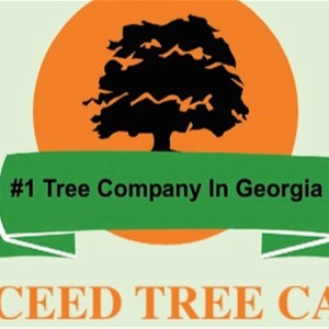 Exceed Tree Care Logo