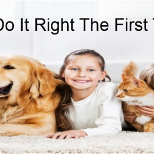 Do It Right Carpet Logo