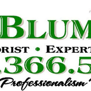 Lyle Blum, LLC Cert Arborist & Expert Tree Climber Cover Photo