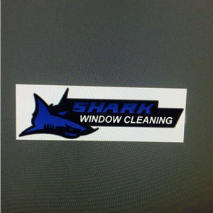 Shark Window Cleaning Cover Photo
