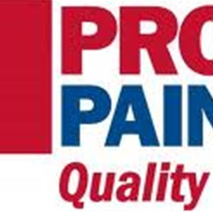 Protect Painters Twin Cities North Metro Logo