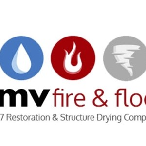 DMV Fire and Flood Logo