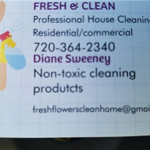 Fresh & Clean Professional House Cleaning Logo