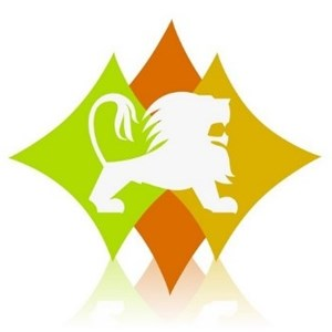 DFW Stoneworks Logo