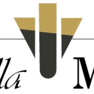 Bella More Interior Design, llc Logo