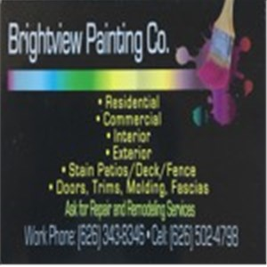 Brightview Painting co. Logo