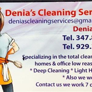 Denias Cleaning Services Logo