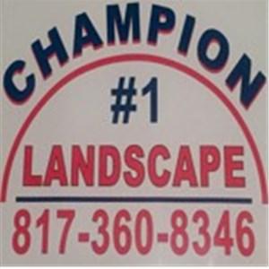 Champion 1 Landscape Logo
