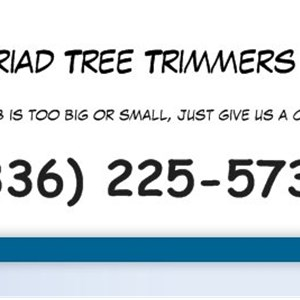 Triad Tree Trimmers Cover Photo