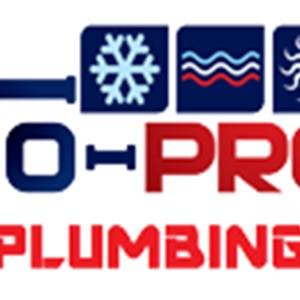 Flo-pro Plumbing Logo