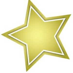Gold Star Services Logo