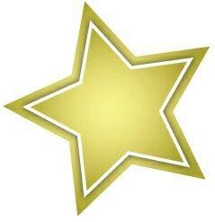 Gold Star Services Logo