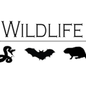 Jasons Wildlife Removal Logo