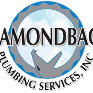 Diamondback Plumbing Services, Inc. Logo