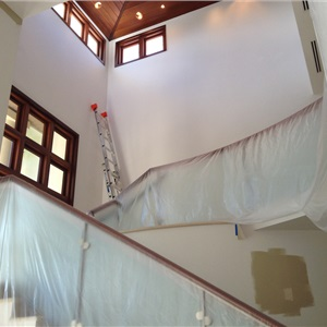 House Mold Removal