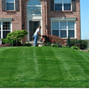Clearys Landscape and Lawn Care Cover Photo