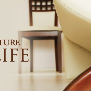 Furniture by Pace Logo