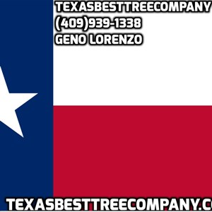 Texas Best Tree Company Logo