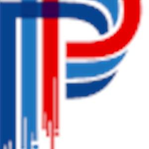 Premier Plus Painting Logo