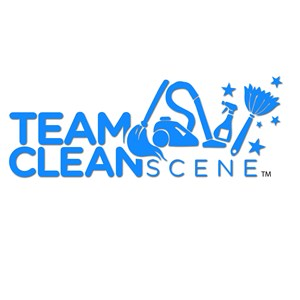 Team Clean Scene Logo