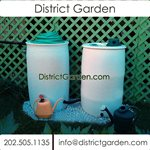 District Garden Cover Photo