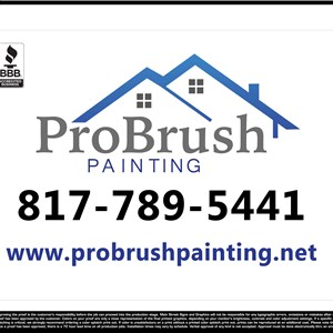 Pro Brush Painting Logo