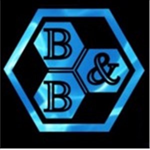 B&B Pristine Pool Services Logo