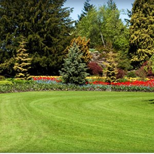 Baur Landscaping Cover Photo