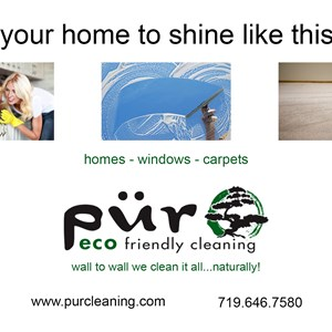 Pur Eco Friendly Cleaning Logo
