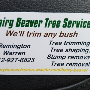 Hairy Beaver Tree Service Logo