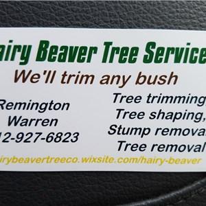 Hairy Beaver Tree Service Logo