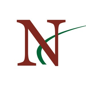 N-Hance Wood Renewal Logo