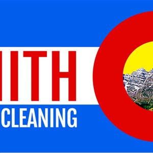 Zenith Window Cleaning Cover Photo