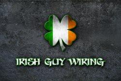 Irish Guy Wiring Logo