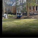 Wardells Landscape Cover Photo