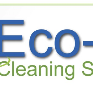 Eco-bay Cleaning Systems Logo
