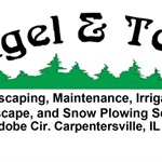 Angel & Tony Landscaping Cover Photo